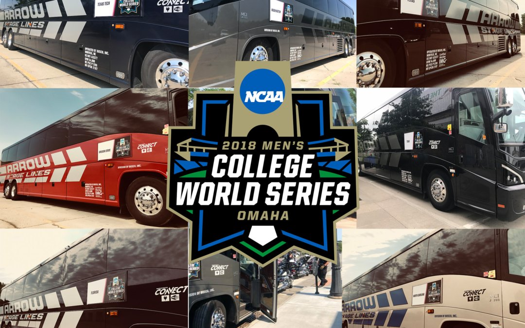 A College World Series Tradition Rooted in Excellence